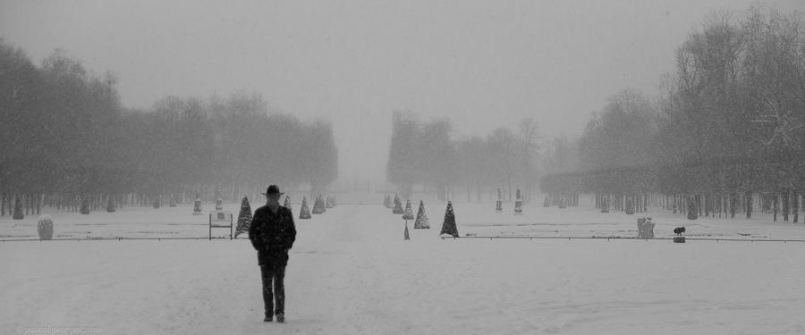 Frimas septentrionaux Winter